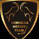 Chwiałka Hockey Team